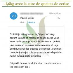 avis_queues_de_cerise (6)
